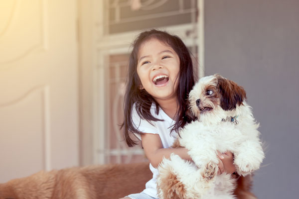 Dogs biting kids: this Shih Tzu is NOT happy being held tightly