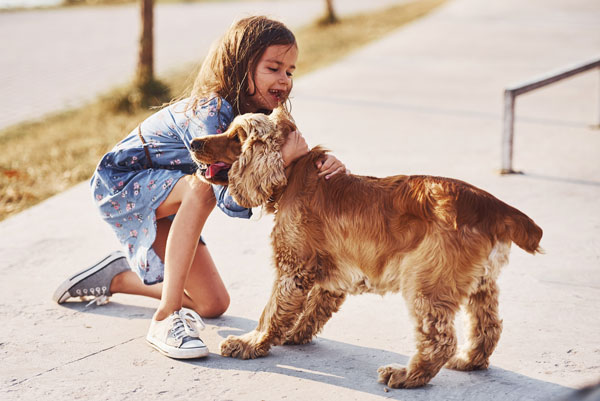 Dogs biting kids: girl tightly holding pup is bad idea
