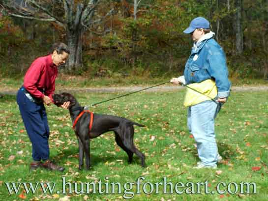 Natural Dog Training helps dogs open up emotionally